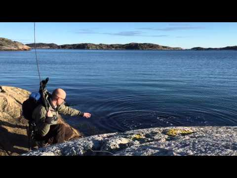#reeltime flyfishing for silvery sea trout in the Norwegian archipelago.