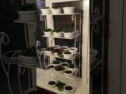 FLORS Стойки и подставки для цветов и комнатных растений