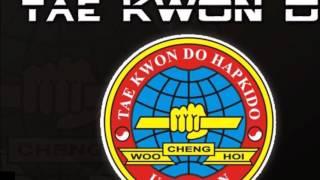 TÉCNICAS DE HAPKIDO GHF CHENG WOO HOI