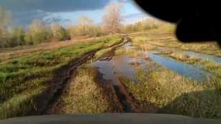 Шнива на полянках после спада уровня