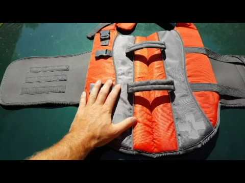 Life Jackets For Your Dog?