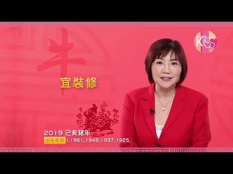 麥玲玲 2019 豬年運程-肖牛篇