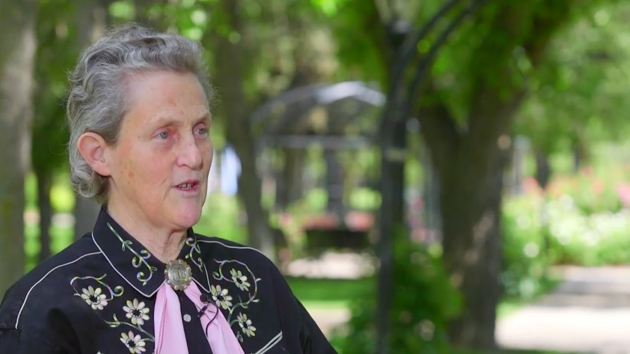 temple grandin ag Fort collins, colo — on a beautiful colorado summer evening, hundreds of students, alumni, university leadership, industry leaders, colleagues and friends gathered to wish a happy 70th birthday to an extraordinary person – temple grandin.