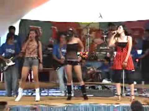 Lagu Dangdut Koplo 2013 2014