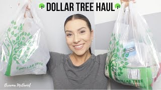Dollar Tree Haul   Breanna McDaniel