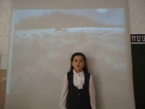 Изображение предпросмотра прочтения – АлинаГалямова читает произведение «Полный месяц встал над лугом» А.А.Блока