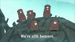 Every time there was a Beaver in Gravity Falls
