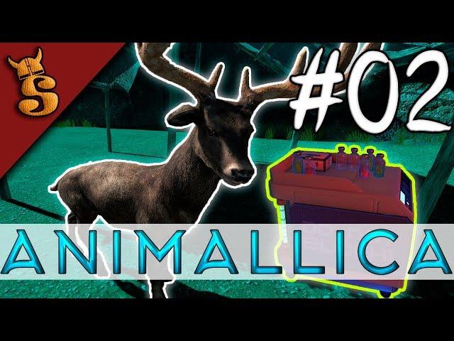 Taming & Exploration | Animallica #02
