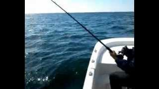 King Mackerel fishing at Atlantic Beach, NC