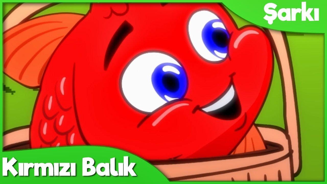 Kırmızı Balık Çocuk Şarkısı | Okul Öncesi Türkçe Çocuk ve Bebek Şarkıları