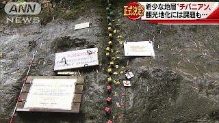 今年、千葉県に歴史的な観光地が誕生するかもしれません。その名も「チ...