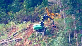 Extreme logging - heavy machines harvesting trees on a steep hillside