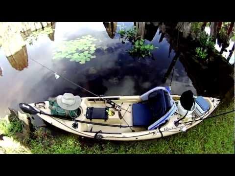 Dead Lakes Wewahitchka, Florida