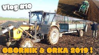 OBORNIK 2019 ☆ ORKA Z LOTU PTAKA ☆[Vlog #10] Test Rozrzutnika  ☆ Agro-Masz