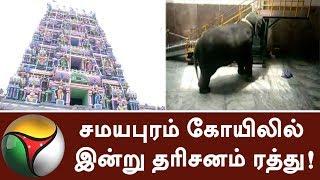 Darshan cancelled at Samayapuram Temple today   #Trichy #Elephant