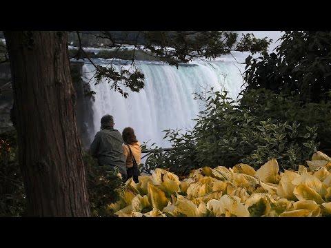 Niagara On The Lake, Niagara Falls, And a Wine Tour