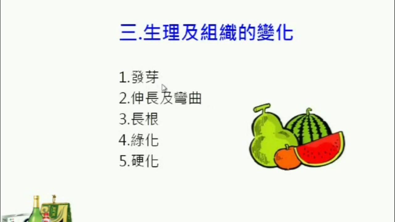 14第十四章蔬果及蔬果加工製品包裝介紹 7