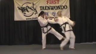 Typical First Taekwondo Gym training session