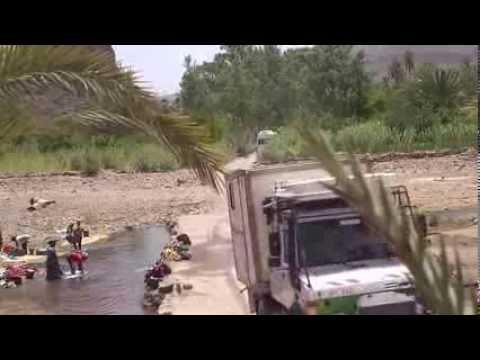 Oasis de Fint Ouarzazate - vues splendides sur la palmeraie - voyager