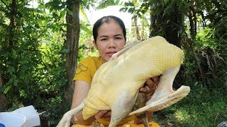 Amazing Cooking Curry Duck With Vermicelli Delicious  -   Curry Duck Recipes  - Primitive Technology