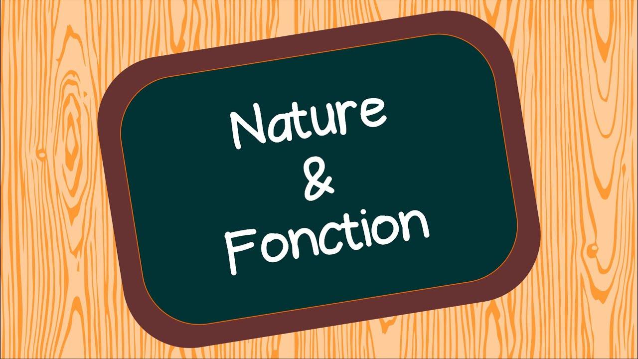 Nature Et Fonction Youtube