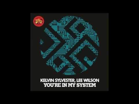 Kelvin Sylvester feat.Lee Wilson - You're In My System (Reelsoul Remix)