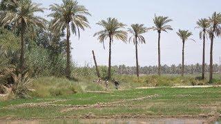 Video Al-Qadisiyyah Province - Iraq download MP3, 3GP, MP4, WEBM, AVI, FLV Desember 2017
