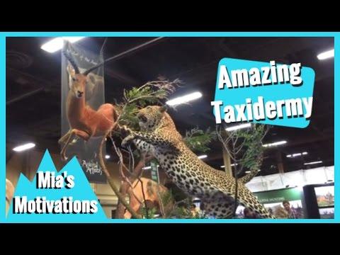 Taxidermy At Safari Club International