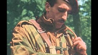 Maxime Le Forestier: Parachutiste ( Reprise), par Joël