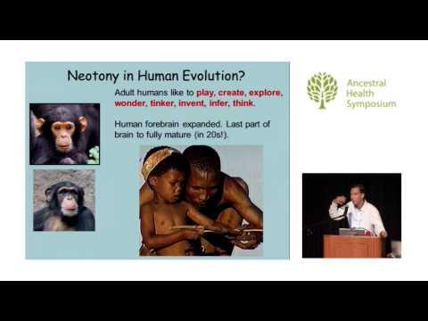 Functional Frivolity: Human Brain Evolution and Play — Aaron Blaisdell, Ph.D. (AHS14)