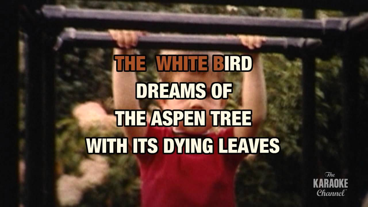 THE INCREDIBLE STRING BAND - WHITE BIRD LYRICS