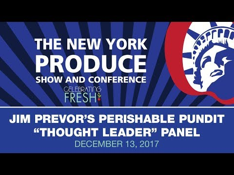 NYPS17 Thought Leader Panel