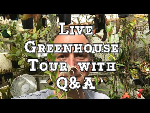 Live Greenhouse Tour for April with Questions and Awnswers: So much to say!