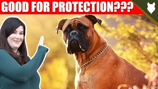 ARE BOXER GOOD GUARD DOGS?
