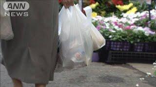 レジ袋は「30円くらいに」経済同友会から意見(19/06/04)
