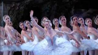 Swan Lake by American Ballet Theatre in 2005 - Stafaband