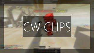 CW Clips | #24 | Mit Stimme und BAC