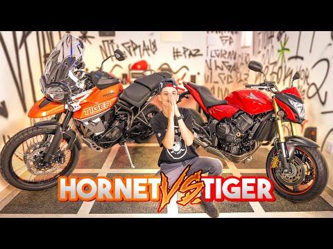 HORNET VS TIGER - QUAL A MELHOR?