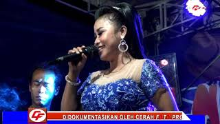 Download lagu Suara Emas Lilin Herlina Kw SAYANG 2 Irma Cowboy Music MP3