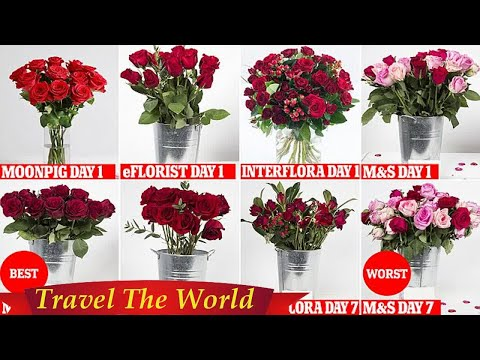 Buying Valentine's Day roses online? Give M&S a miss  - Travel Guide vs Booking