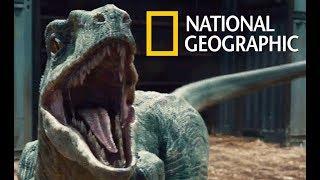 Prehistoric Wildlife - Monster (2018 Documentary)