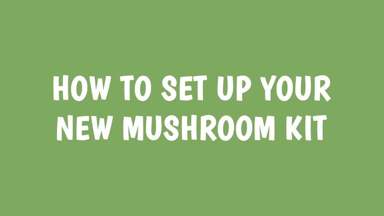 Growing Tips | Mushroom Kit