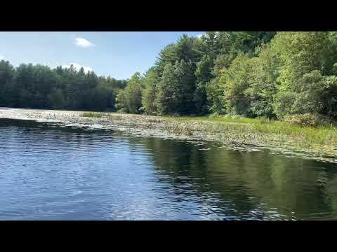 Lake Wintergreen Hamden Connecticut Video @gregnutcher