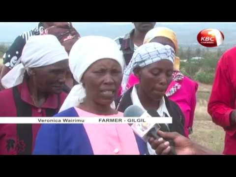 Women in small-scale farming benefit from water conservation training