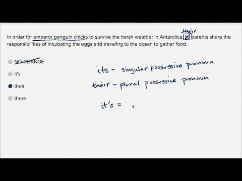 Writing: Pronoun person and number — Basic example | Writing & Language | SAT | Khan Academy