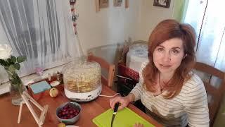 Сушилка для овощей и фруктов ВВК. Обзор.КОНКУРС!!!!!!!