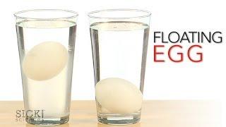 Floating Egg - Sick Science! #167