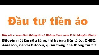 Bitcoin một lần nữa tăng, thị trường tiền ảo, CNBC, Amazon, cá voi Bitcoin, quan trọng của thông tin