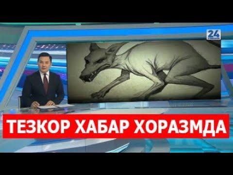 ТЕЗКОР ХАБАР \