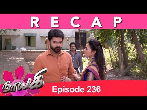 RECAP : Naayagi Tamil Serial Full Episode